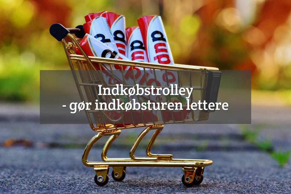 Indkøbstrolley – indkøbsvogn / indkøbstaske på hjul